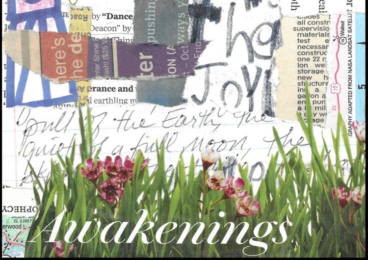 AKC -- Awakenings